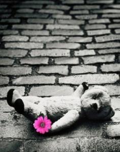 teddyboden